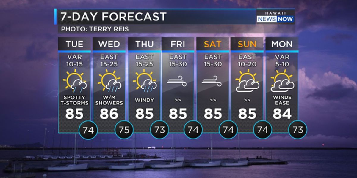 Forecast: Thunderstorms to persist but gusty winds on the way