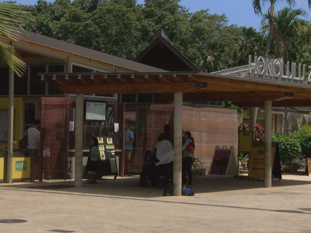 Honolulu Zoo to welcome families back on June 5