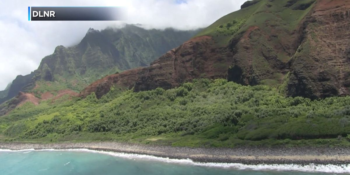 DLNR to open controlled goat hunting opportunity in Na Pali Coast park