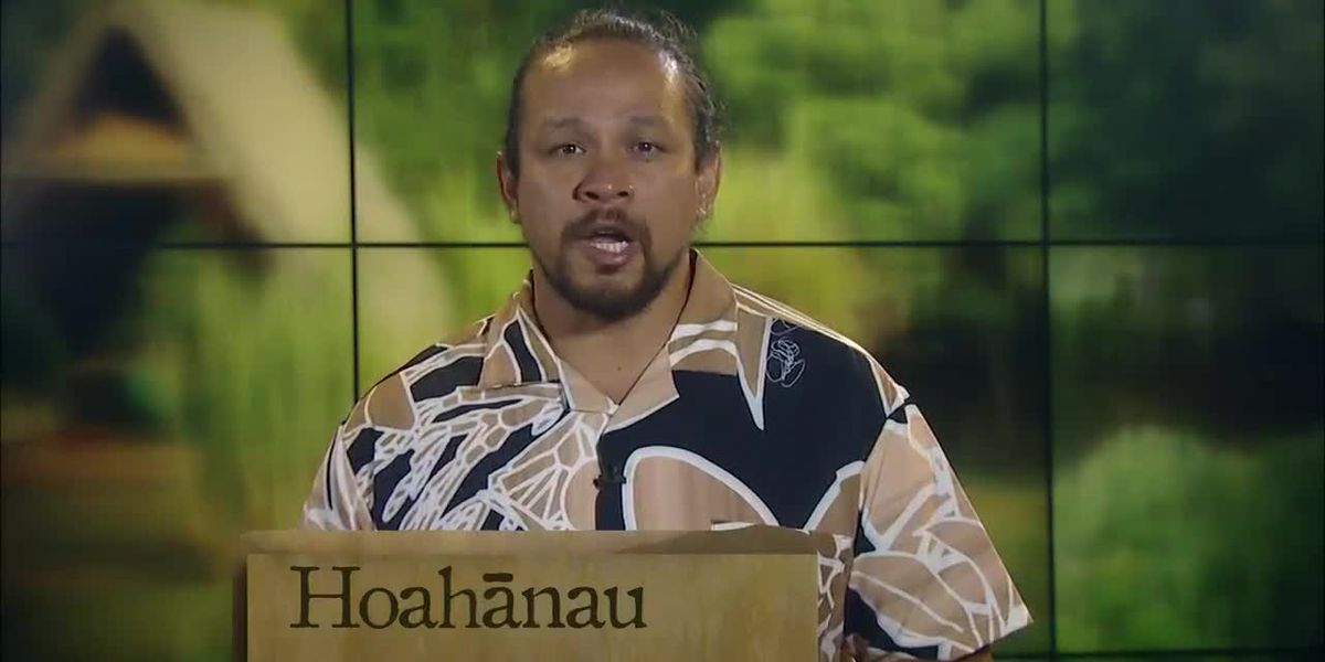Hawaiian Word of the Day: Hoahānau