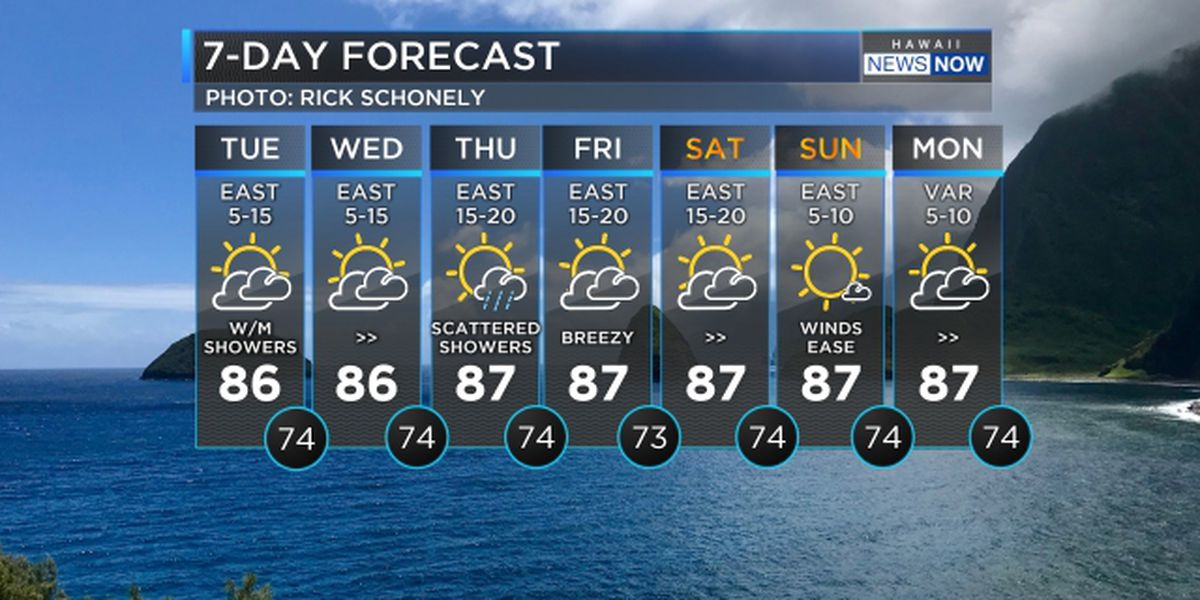 Forecast: Steady trade winds to hold into the weekend