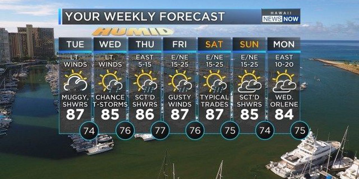 Forecast: Moist tropical air mass bringing humidity, wet weather