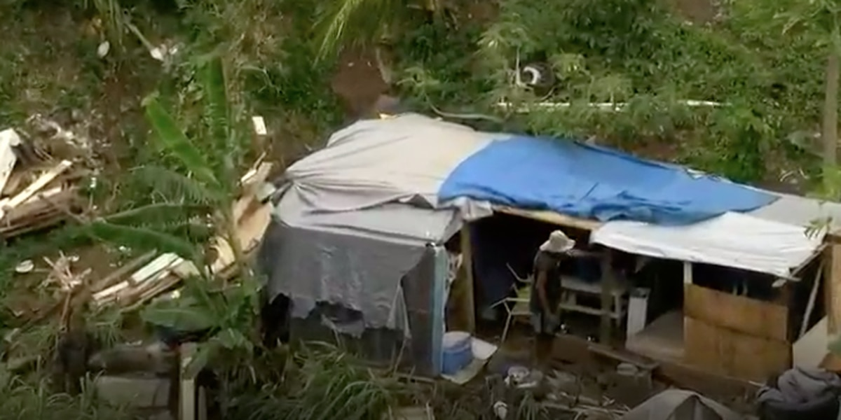 Residents run into red tape in push to tackle squatters' village in Kalihi Valley