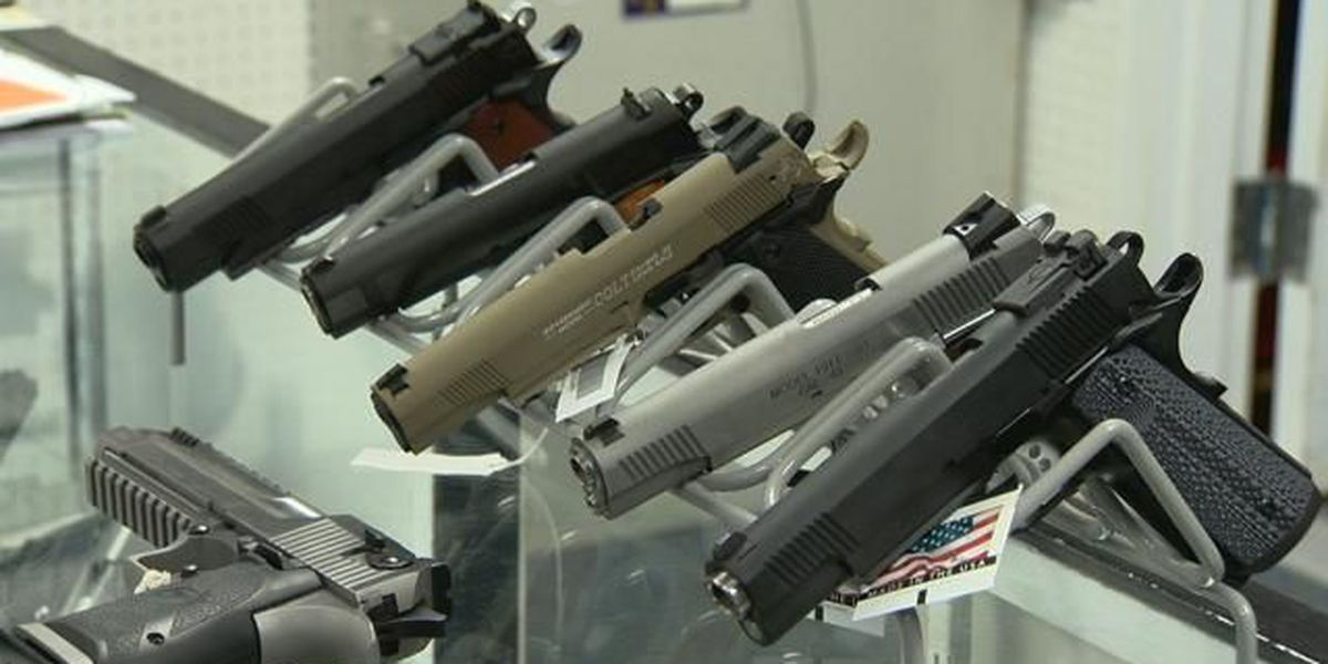 Hawaii bill would ban stalkers from buying guns