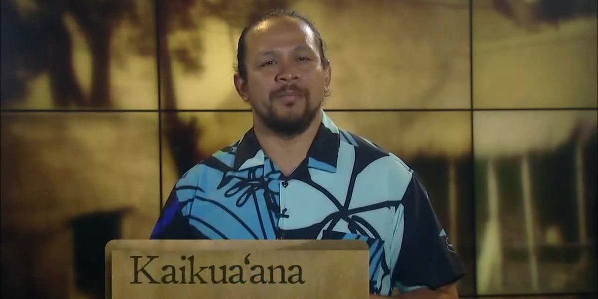 Hawaiian Word of the Day: Kaikuaʻana