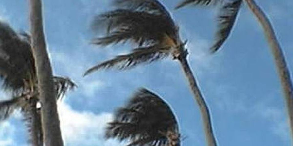 Wind advisories issued, strong north/northeast winds expected
