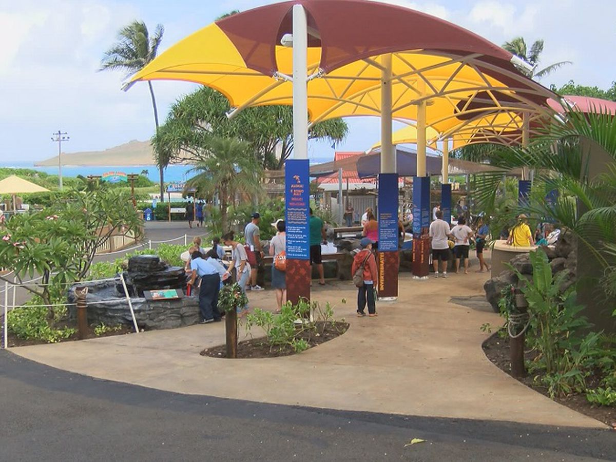 Sea Life Park prepares to welcome guests for the first time in nearly a year