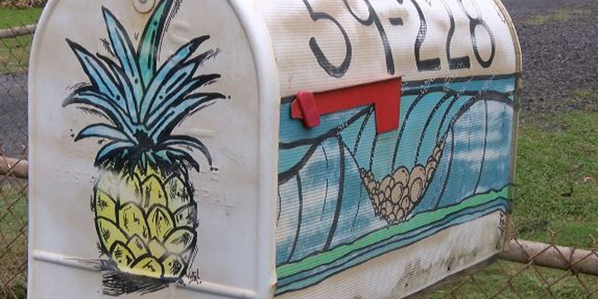 PHOTOS: Check out these bizarre mailboxes on Oahu's North Shore