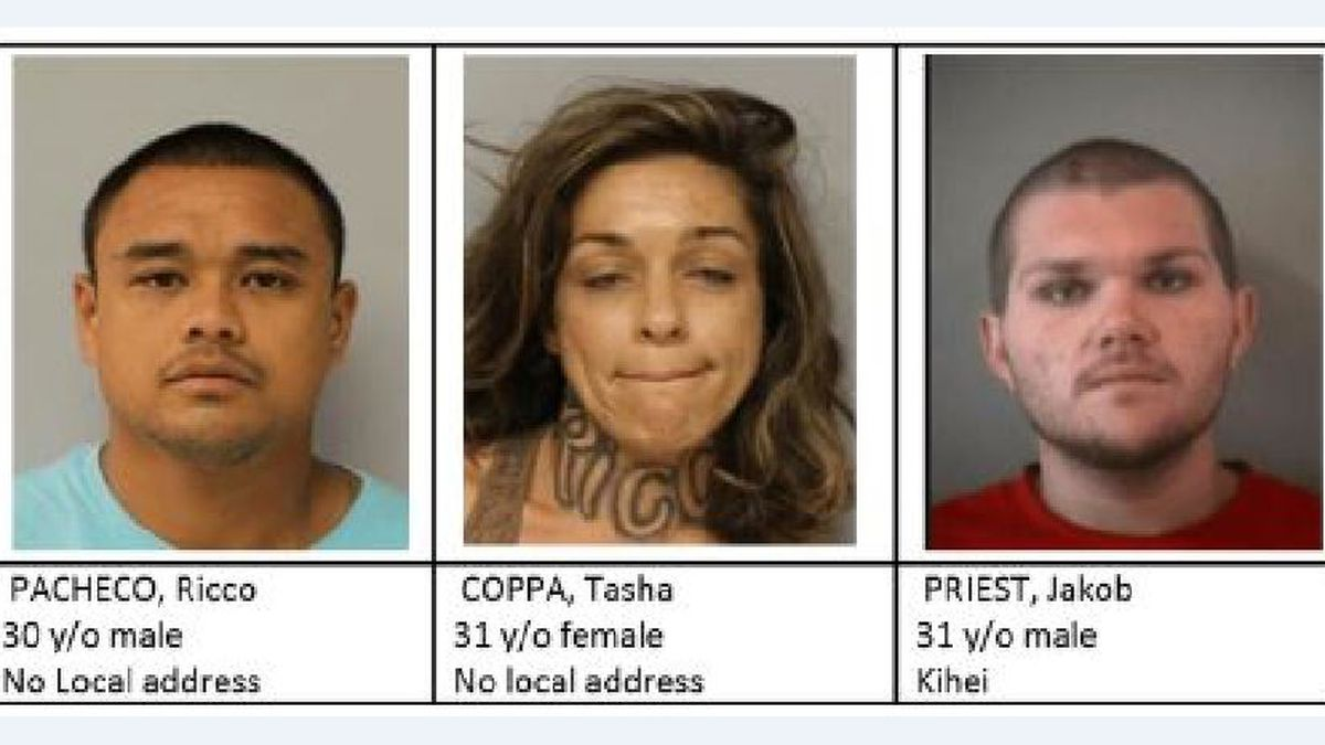 Maui police identify 3 suspects arrested after officer almost hit by car