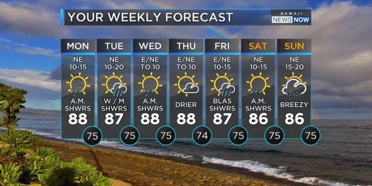 Forecast: Lighter trades, sunshine to start the work week