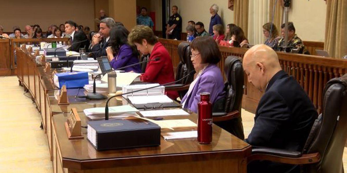 Council postpones budget briefing amid leadership drama