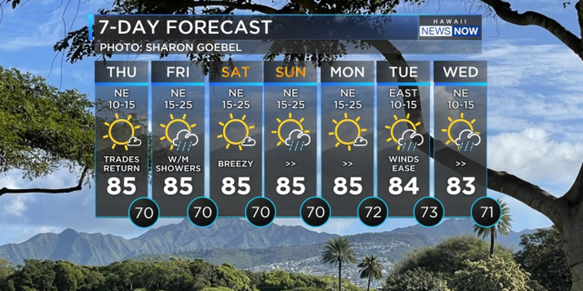 Forecast: Trade winds firming up for the weekend