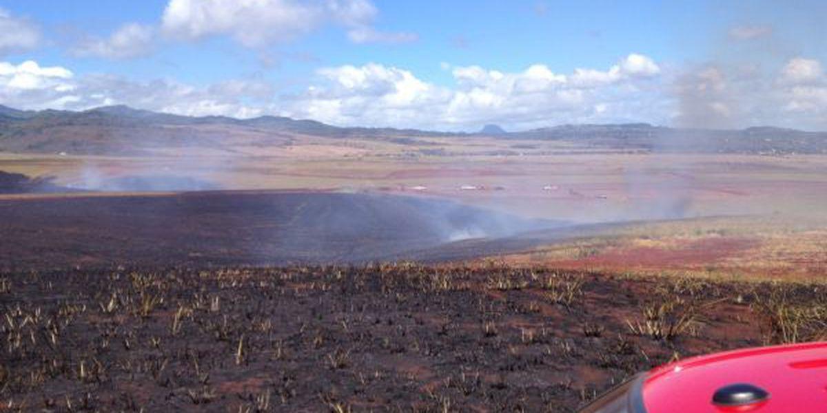 Fire crews extinguish Kauai brush fire