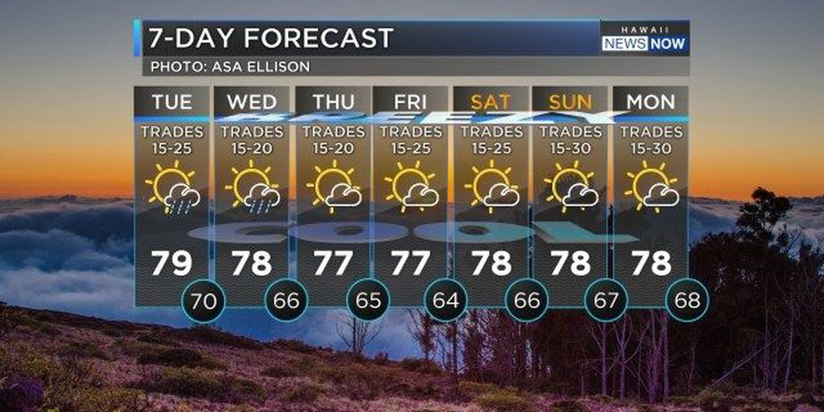 Forecast: Still breezy, but wetter conditions