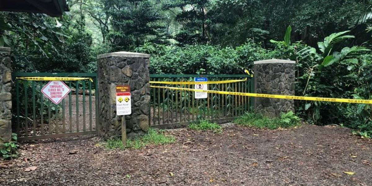 4 men cited for ignoring Manoa Falls Trail closure to appear in court
