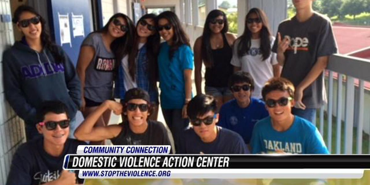 Community Care Connection: Domestic Violence Action Center