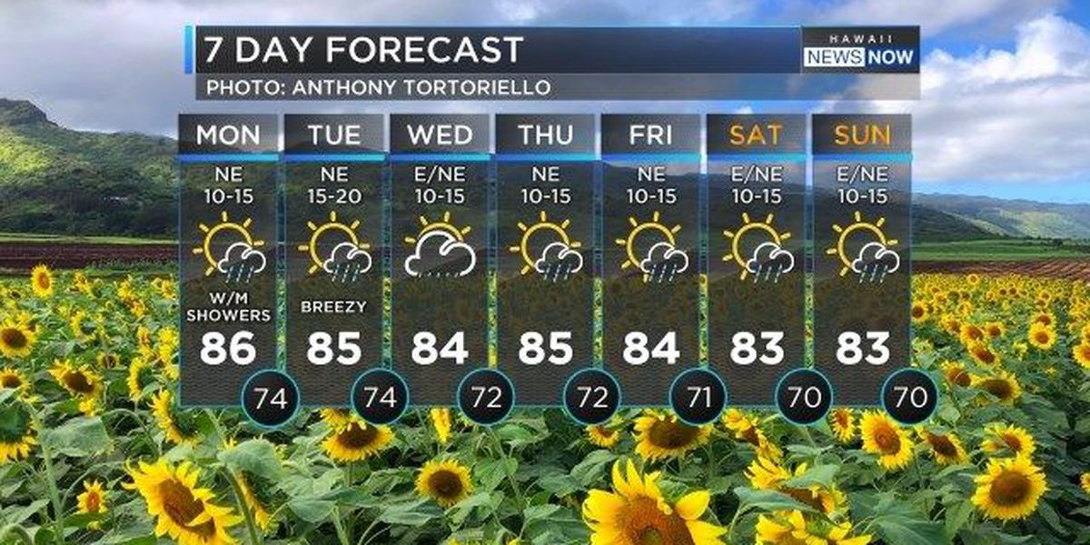 Forecast: Trade wind weather to start the work week