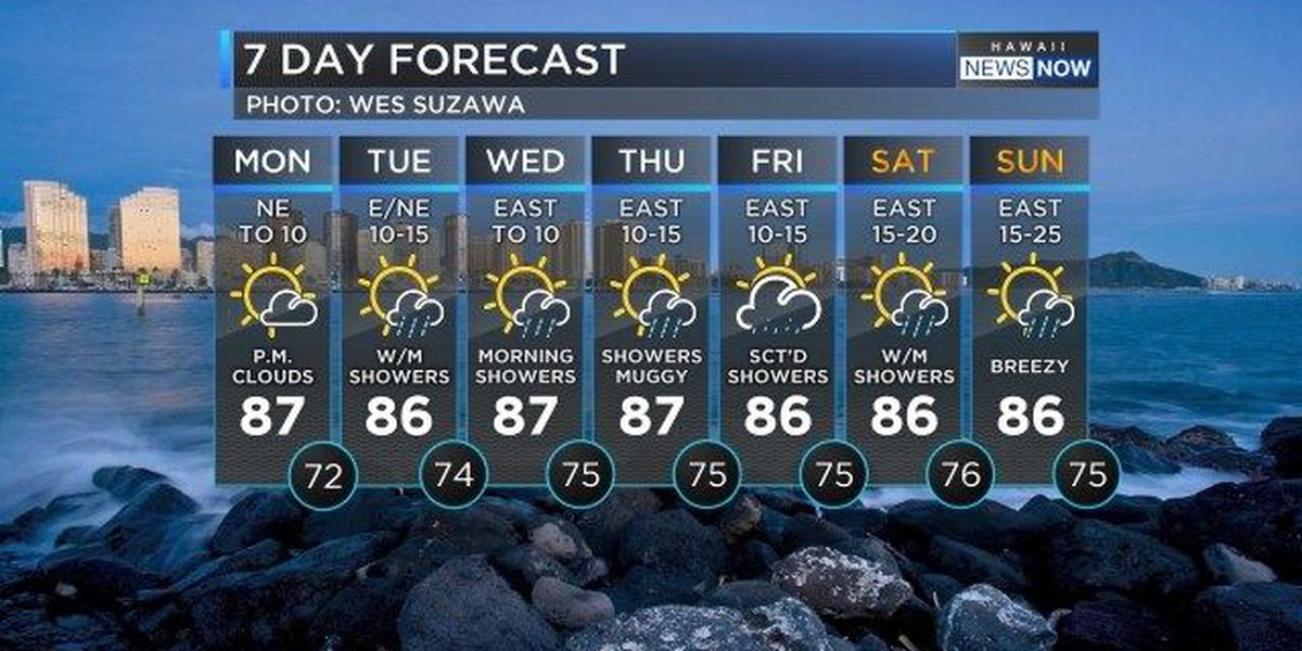 Forecast: Light trade winds to return