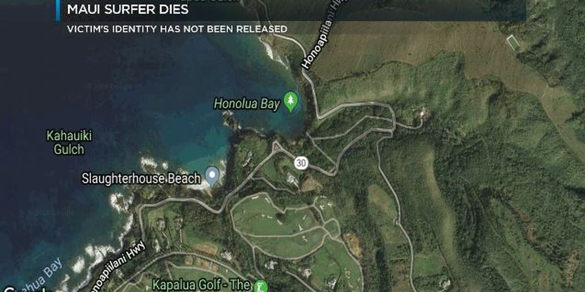 Surfer dies after being pulled from Maui waters