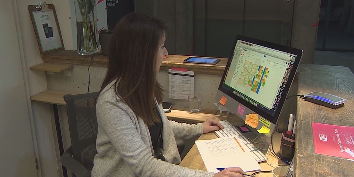 Dozens of Hawaii employers participate in virtual job fair
