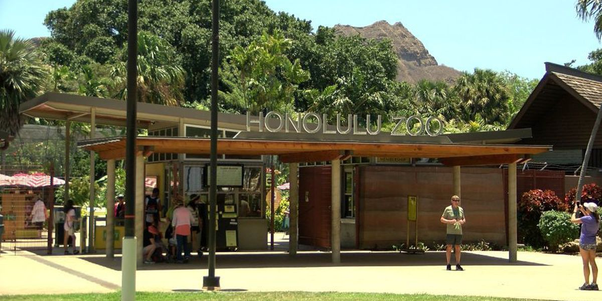 Honolulu Zoo to reopen Thursday after daylong closure