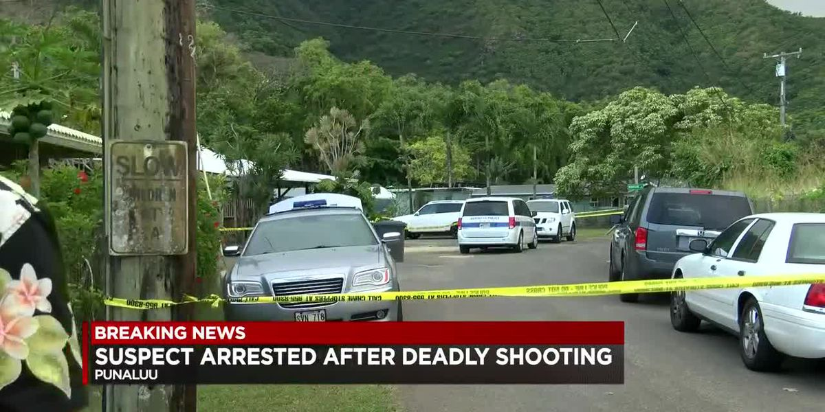 Sources: Homicide investigation opened in Punaluu after apparent shooting