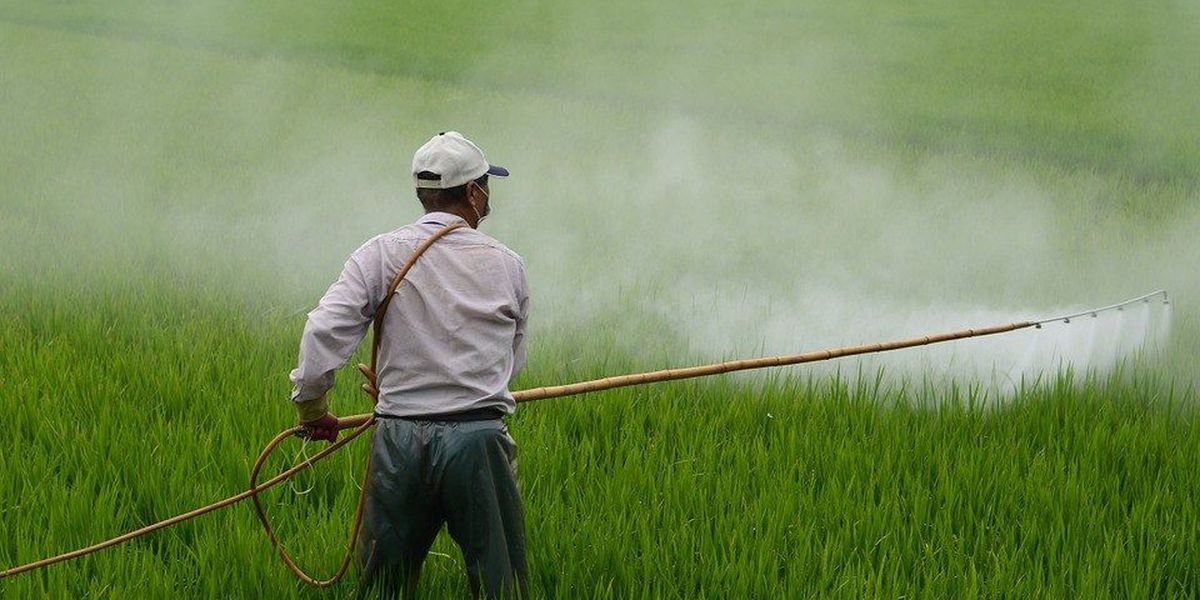 Hawaii County moves closer to ban its use of toxic herbicides and pesticides