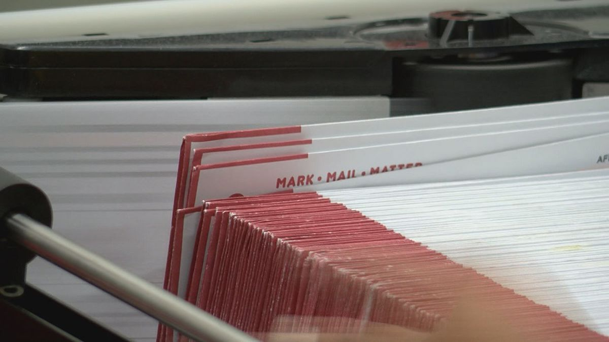 Hawaii Senate committee passes automatic voter registration
