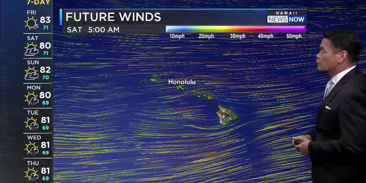 Forecast: More gusty trades and windward showers ahead
