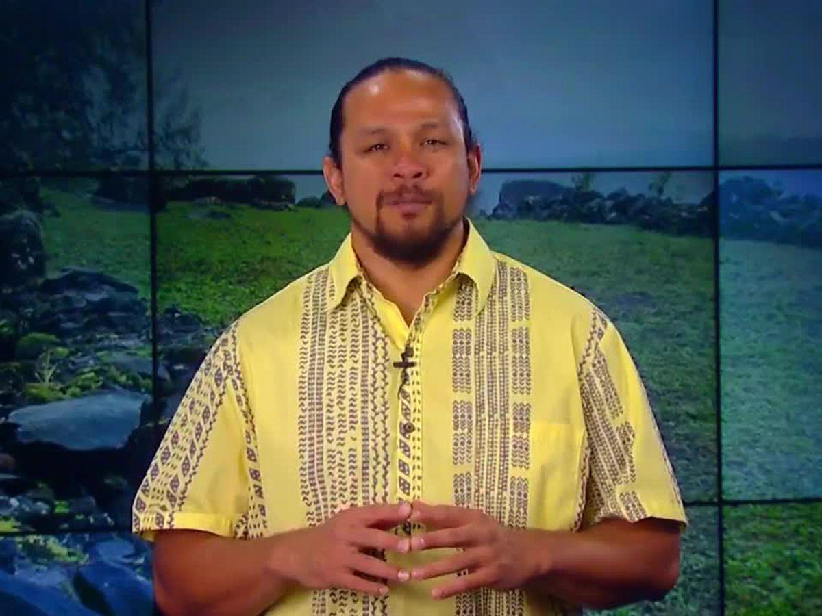 Hawaiian Word of the Day: Palekana
