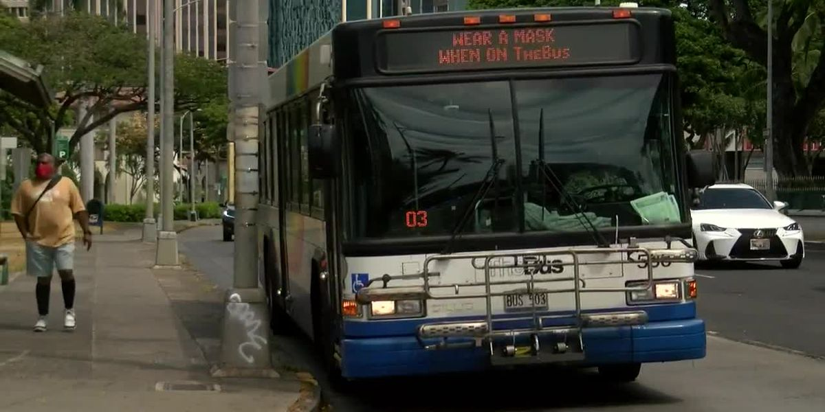 Another Honolulu city bus driver tests positive for COVID-19, officials say