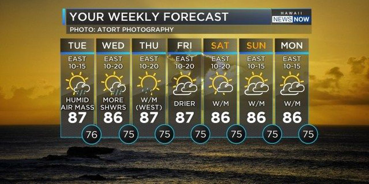 Forecast: A hot and humid day with some passing showers