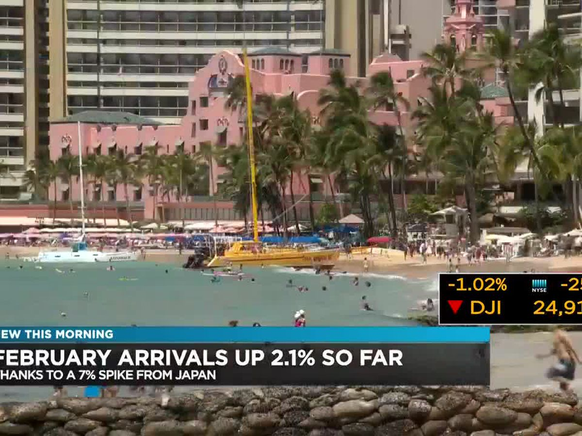 Business Report: Hawaii visitor stats and the reopening of the Hilton Ocean Tower