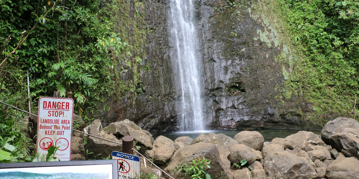 Improvement work to trigger intermittent closures of Manoa Falls Trail