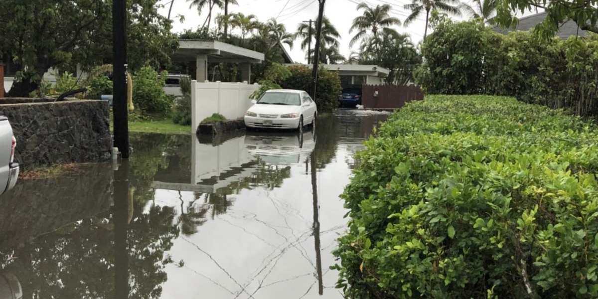 Wastewater spills reported around Oahu after heavy rains subside