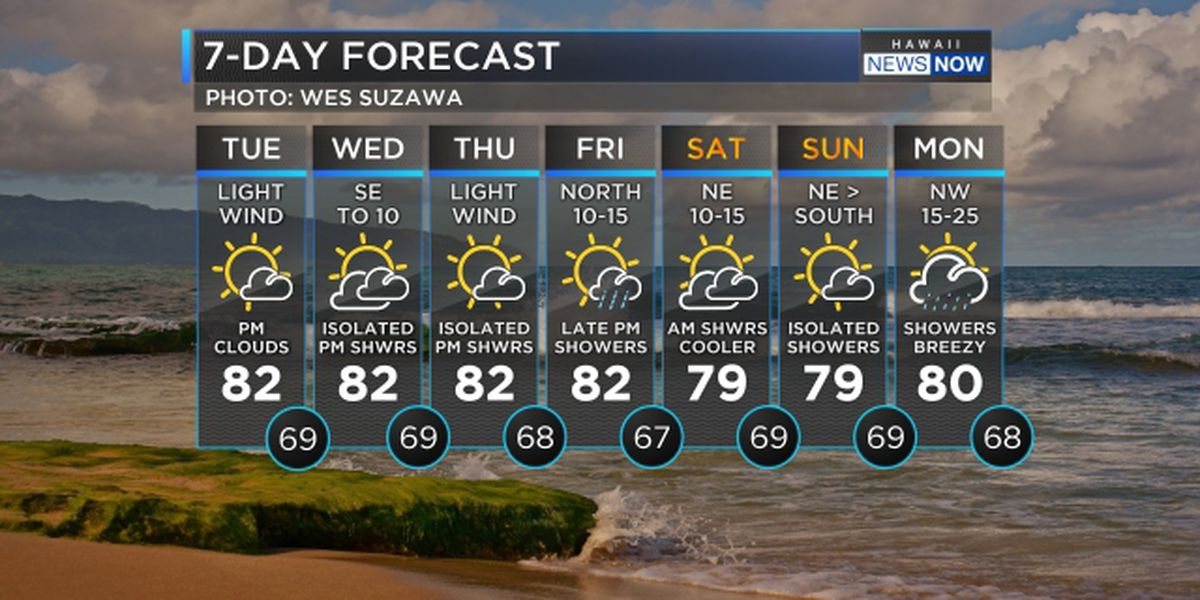 Forecast: Light winds to persist, more big surf on the way