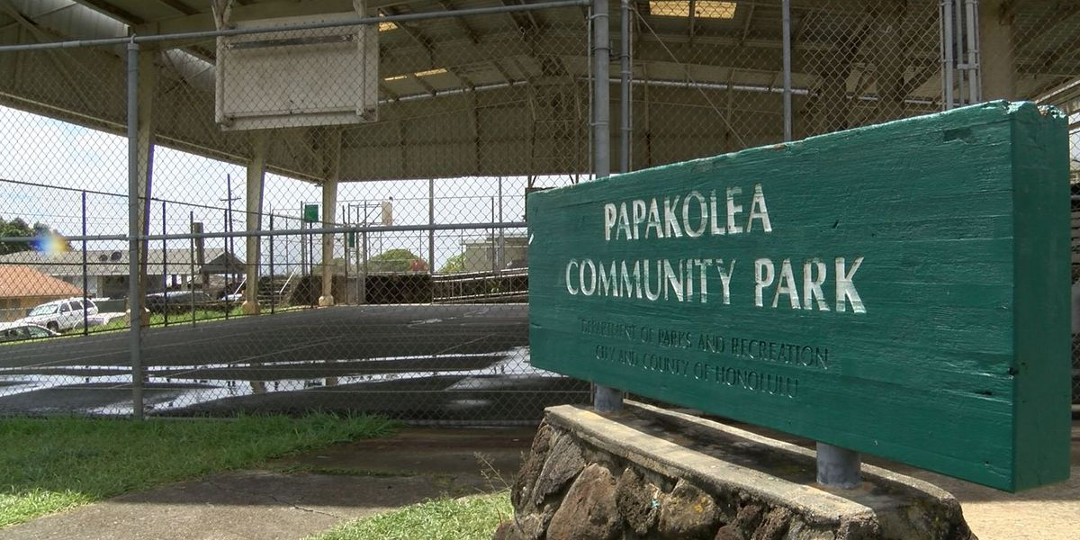 Man gets probation after large fight in Papakolea in 2018