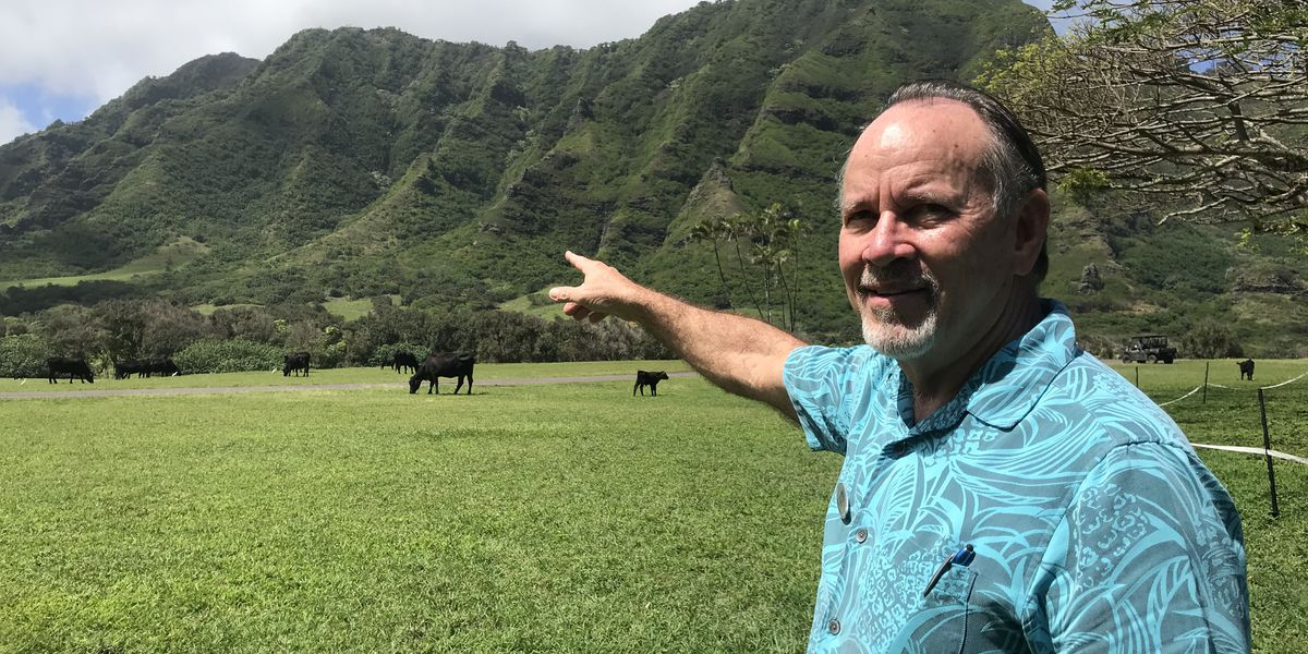 How to save Haiku Stairs? Kualoa Ranch suggests they be moved