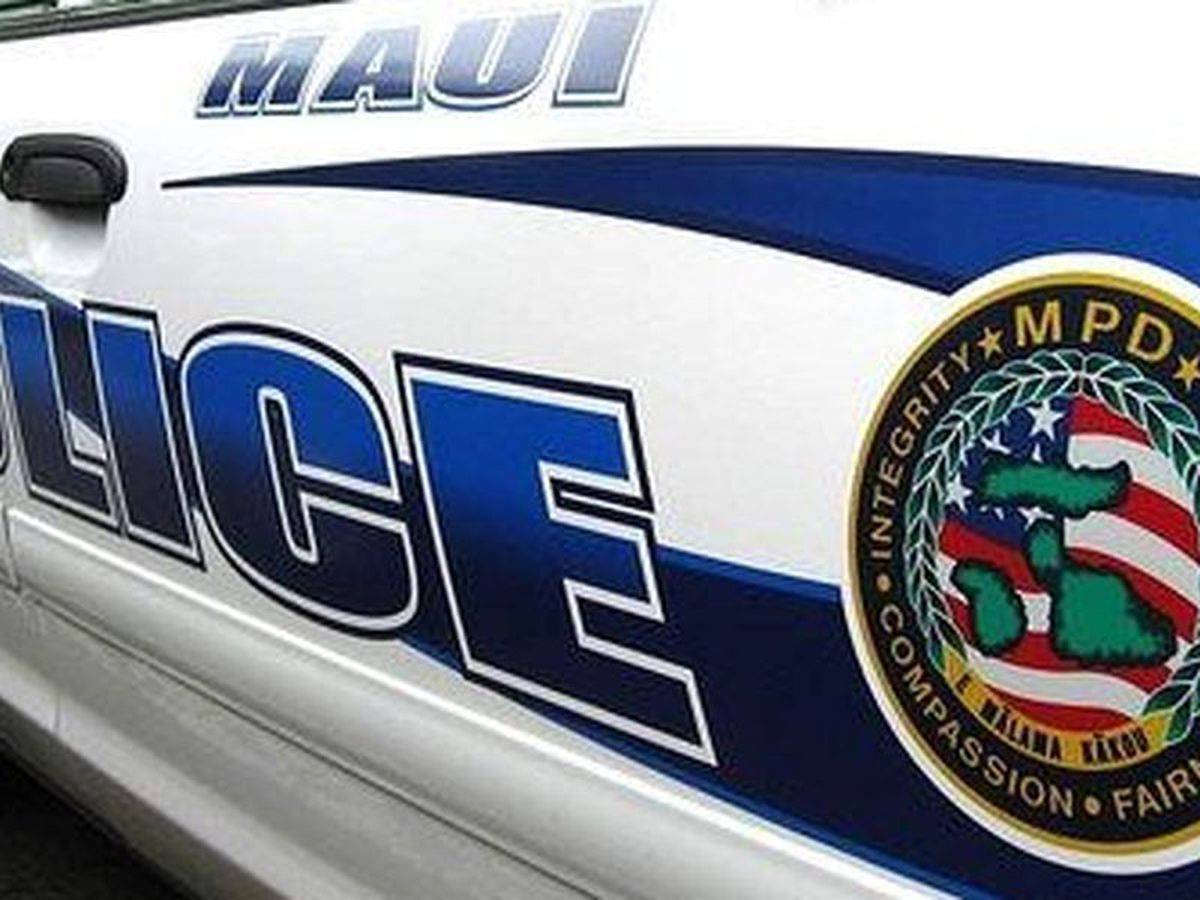 Crash involving wild pig leaves a man critically injured on Maui