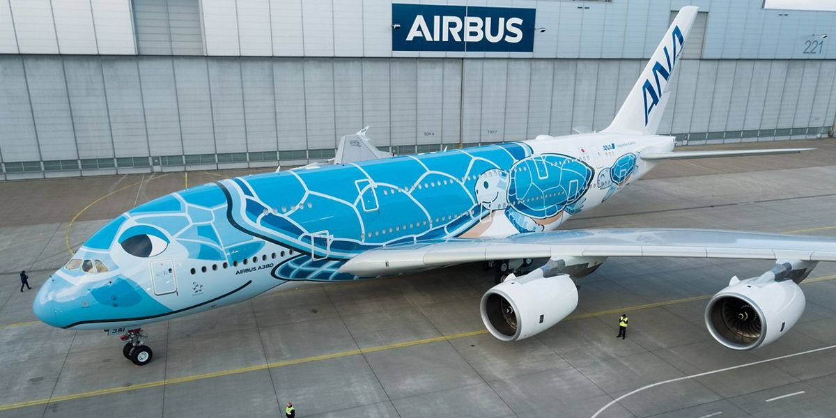 Japanese airline unveils honu-themed airbus bound for Honolulu in 2019