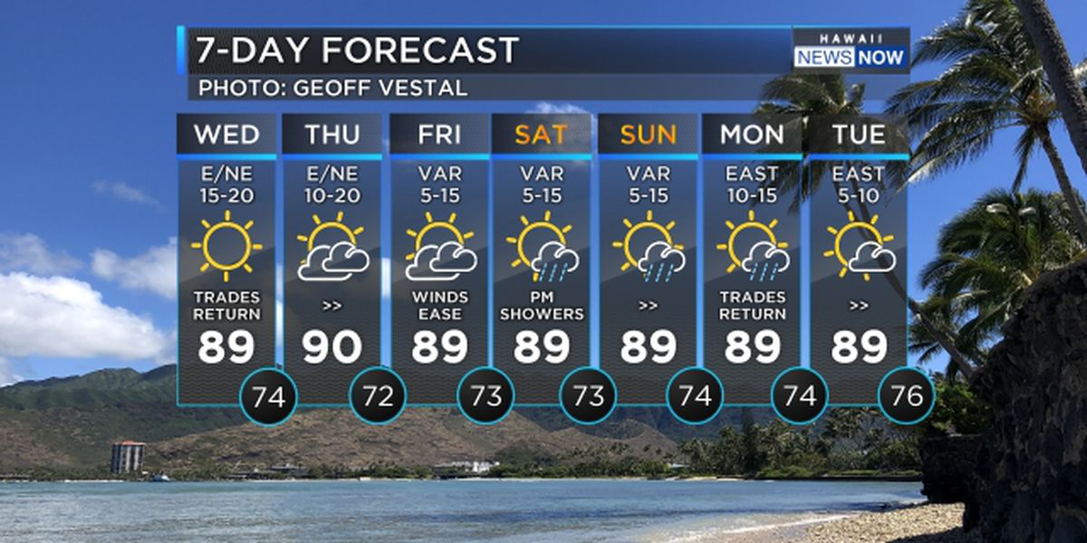 Forecast: Trade winds building with more comfortable conditions