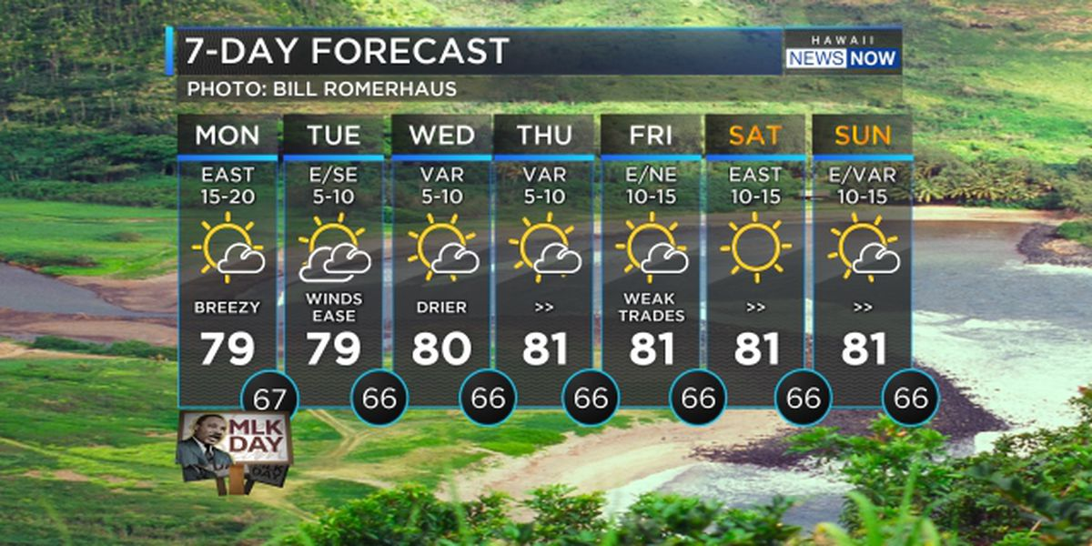 Forecast: Dry conditions, lighter winds for this week