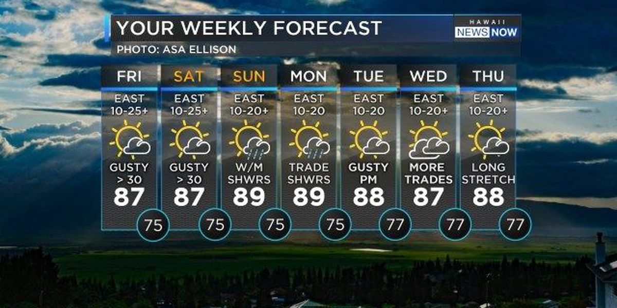 Forecast: Trade winds strengthen overnight to make for a breezy Aloha Friday