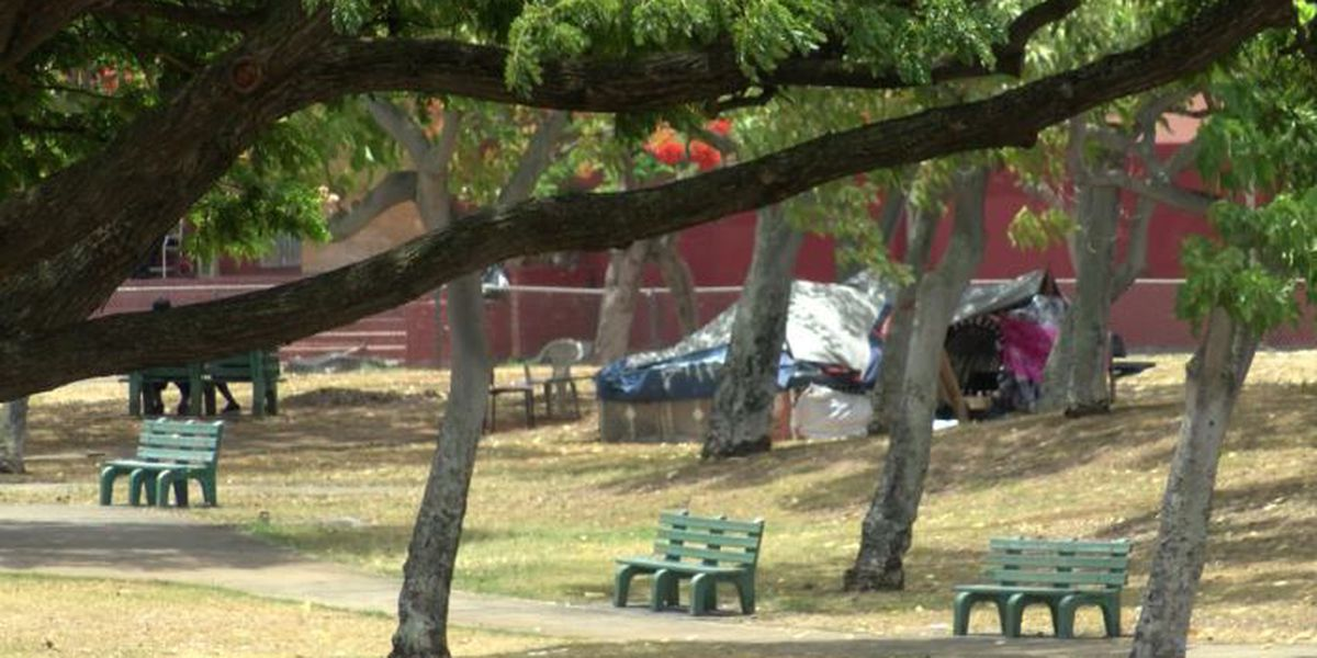 Residents near a Moiliili park say homeless turned the area into a haven for drug use