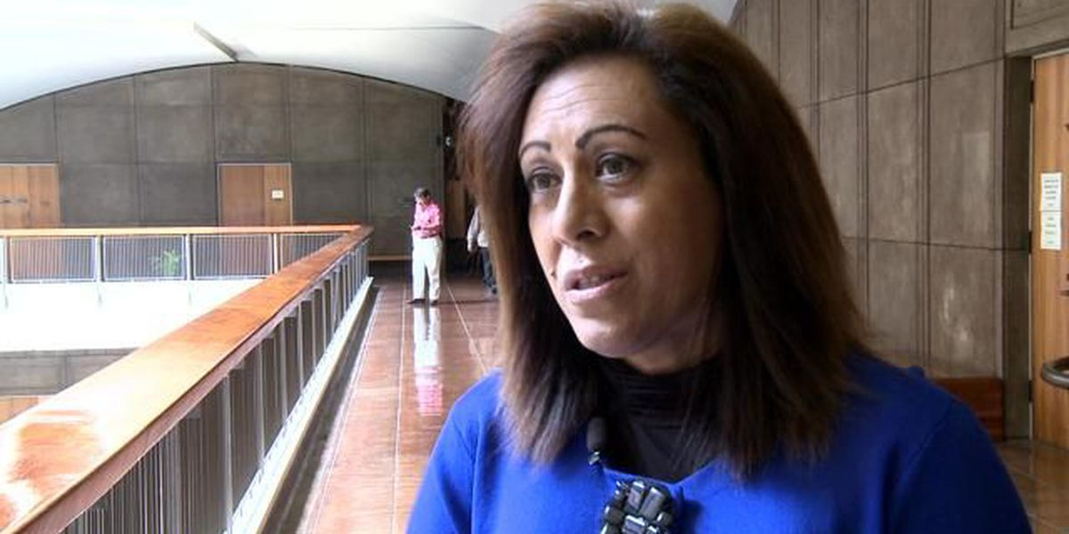 13 apply to replace state Rep. Mele Carroll
