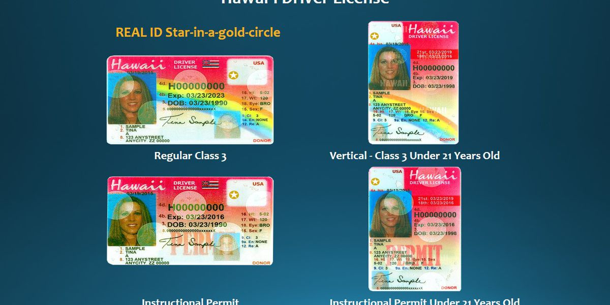 Need a DHS-approved duplicate license? You might be able to get one online