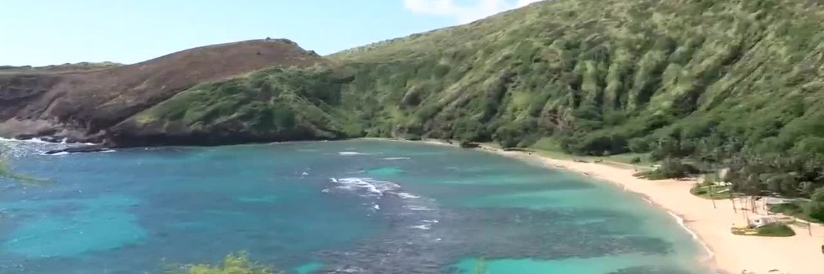 Are people loving Hanauma Bay to death? A new study is trying to answer that question