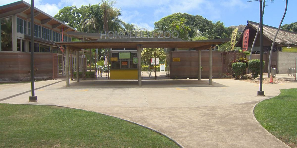 Months after partial reopening, Honolulu Zoo returns to a 7-days-a-week schedule