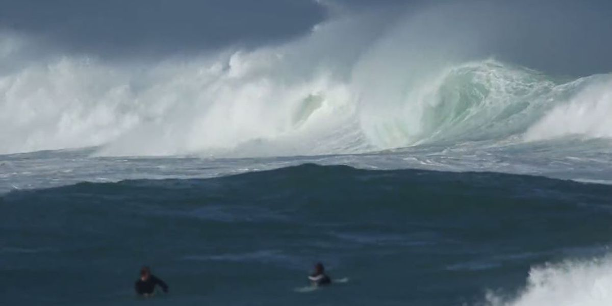 Warning-level surf expected for north, west shores through Wednesday