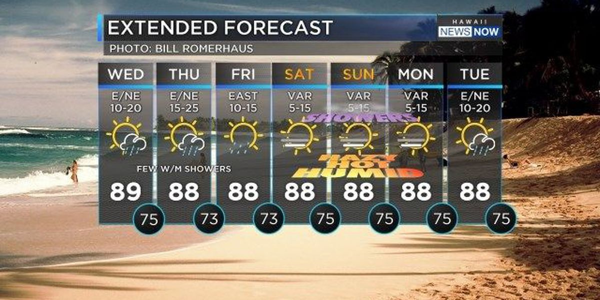 Forecast: Trade winds slowly building